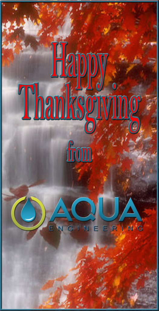 Thanksgiving Aqua 2015D